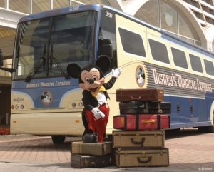 Even Mickey thinks we have overpacked.